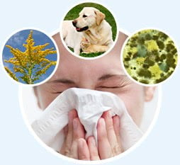 kaszel alergiczny