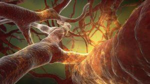 Podwyższony poziom amoniaku we krwi - HIPERAMONEMIA