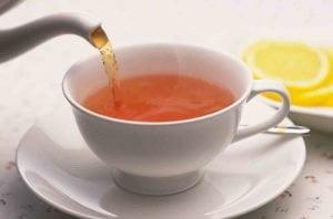 mięta herbata